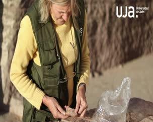 Cuarta semana de trabajos arqueológicos en la necrópolis de Qubett el-Hawa en Asuán (Egipto)