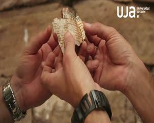 Sexta semana de trabajos arqueológicos en la necrópolis de Qubett el-Hawa en Asuán (Egipto)