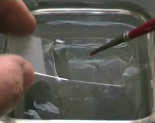Tinción hematoxilina/eosina