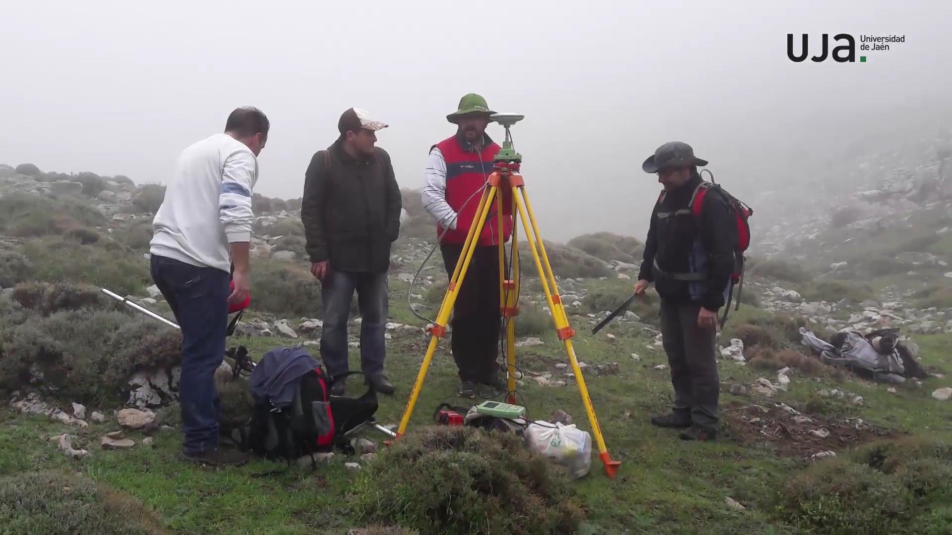 Identifican especies de hongos como componentes modulares de efectos cambio climático en bosques