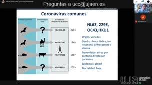Coronavirus y otros virus emergentes